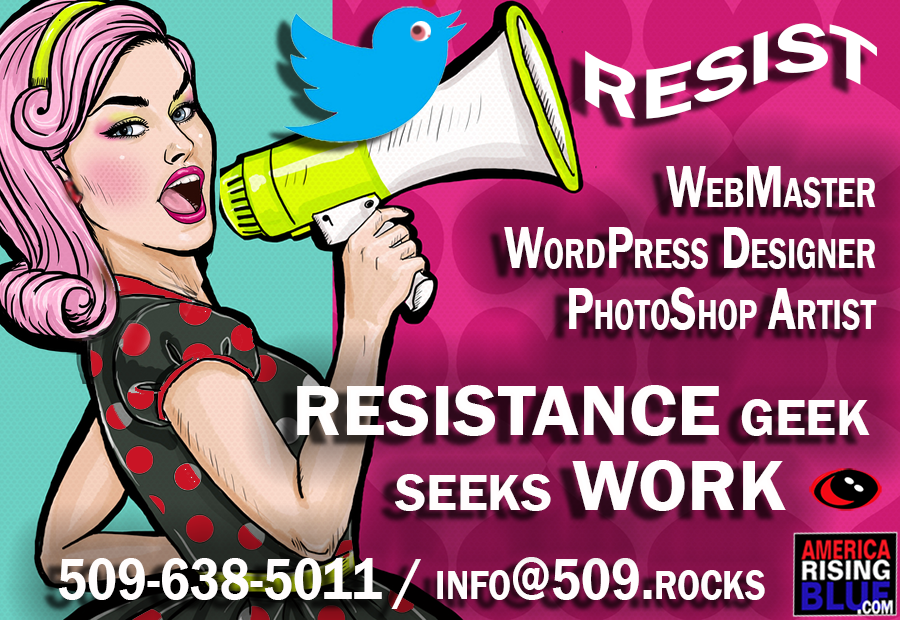 RESISTANCE Geek Seeks Work