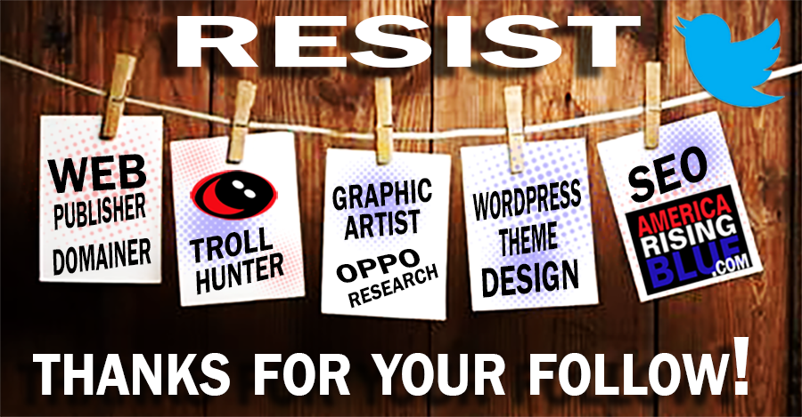 America Rising BLUE RESISTANCE web publisher seeks work