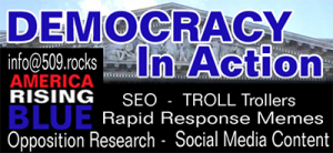 American Rising Blue - Democracy in Action. SEO, troll hunter, opponent research, social media content